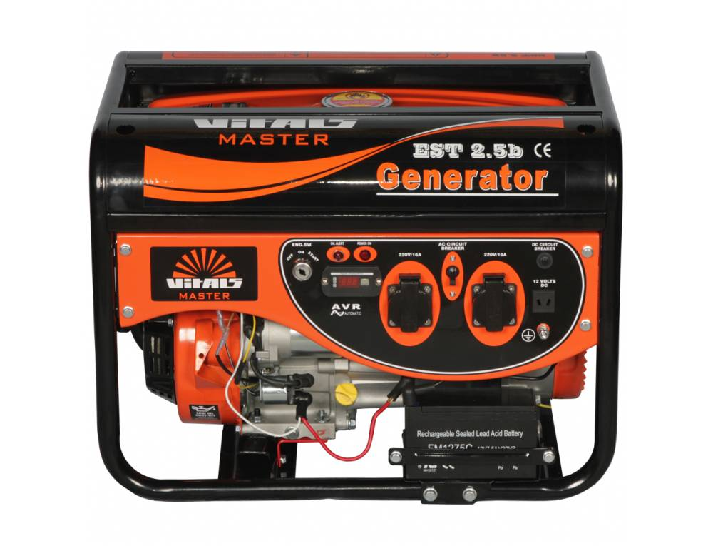 Генератор бензиновий Vitals Master EST 2.5b